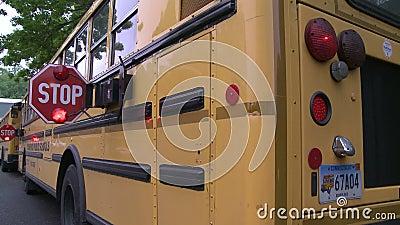 Schulbusstoppschilder stock video