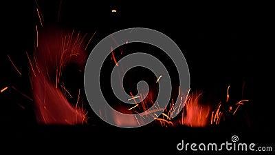 Schwärme roter Flammen und Funken steigen in totaler Dunkelheit an stock video