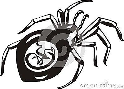 Schwangere Spinne