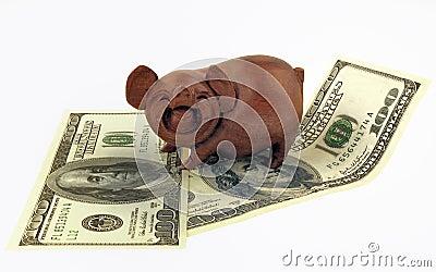Schweine und Geld