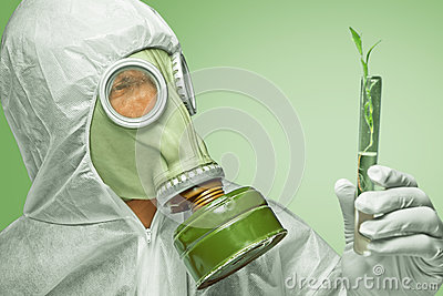 Scientist examines green plant