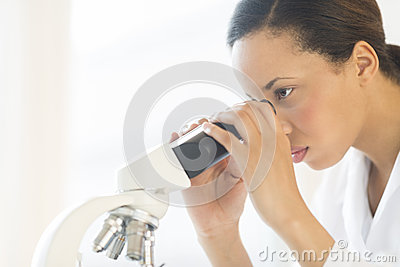Scientist Looking Through Microscope In Laboratory