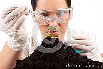 Scientist woman  working