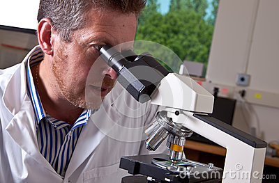 Scientist works with microscope