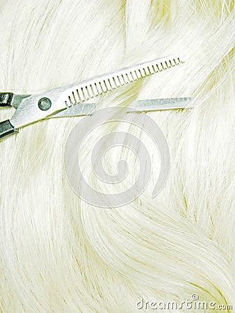 Scissors in blond hair