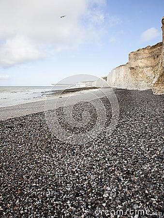Scogliere di bianco di Dover Gran-Bretagna