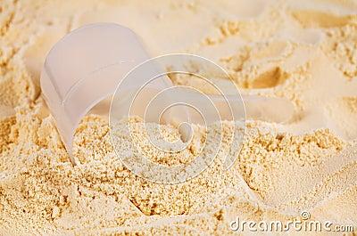 Scoop of vanilla whey isolate protein