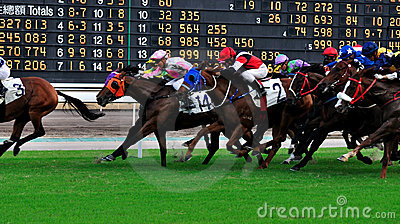 Score board of horse racing Editorial Image