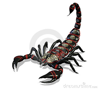 Free Scorpion - With Clipping Path Royalty Free Stock Photos - 666848