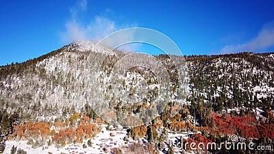 Scorrevole invernale della montagna di caduta con neve e colori di autunno archivi video