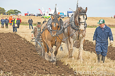Scottish National Ploughing Championship. Editorial Stock Image