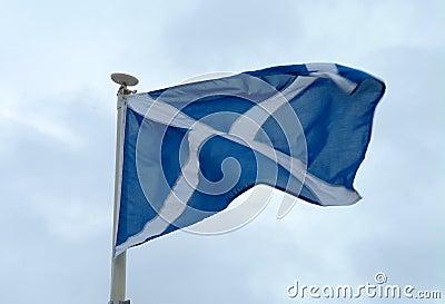 Scottish Saltire Flag In Motion