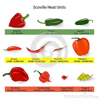 Free Scoville Scale Of Chilli Peppers Spiciness, Vector Royalty Free Stock Photos - 119444218