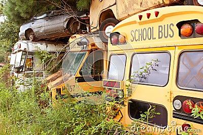 Scrapped School Buses Sit In Auto Junkyard