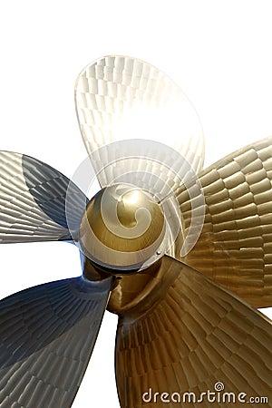 Screw propeller