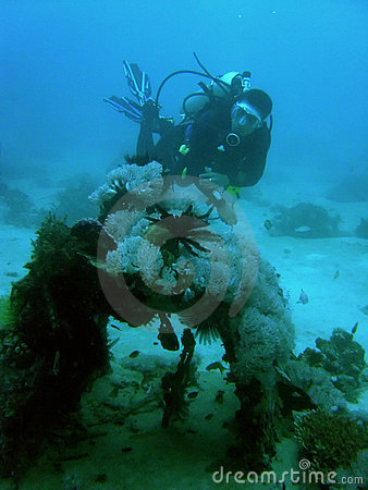 scuba diver exploring zero wreckage philippines