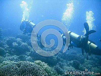 Scuba diver group lesson