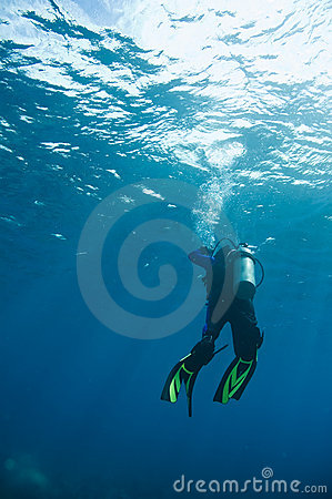 Free Scuba Diver Heading To Surface Stock Photo - 4604510