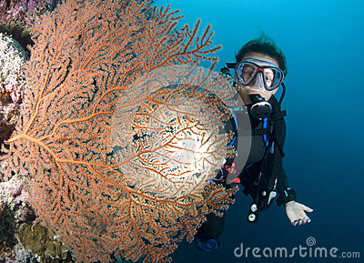 SCUBA Diver and red sea fan