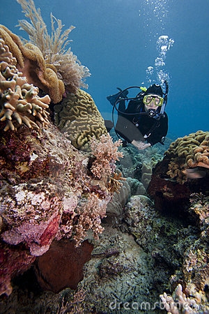 Scuba diver swimming over a tropical coral reef