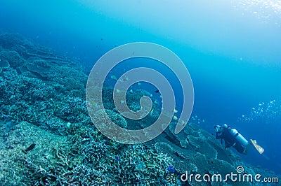 Scuba diver take photo