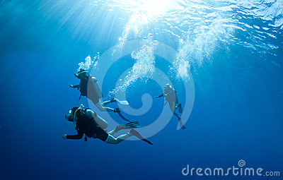 Scuba divers accend from a dive