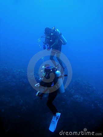 scuba divers reef wall sabang philippines