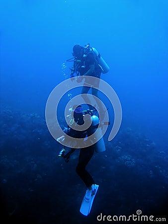 scuba divers reef wall sabang philippines