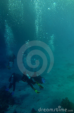 Scuba Divers In The Sea Stock Photo - Image: 12243830