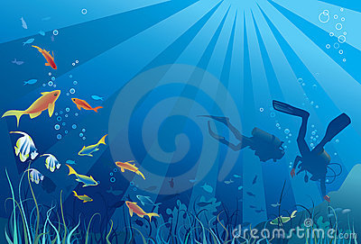 Scuba divers, underwater sea life