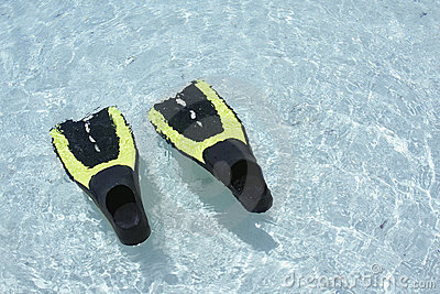 Scuba Fins in water