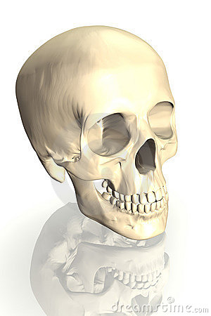 Free Scull Royalty Free Stock Photos - 3188848