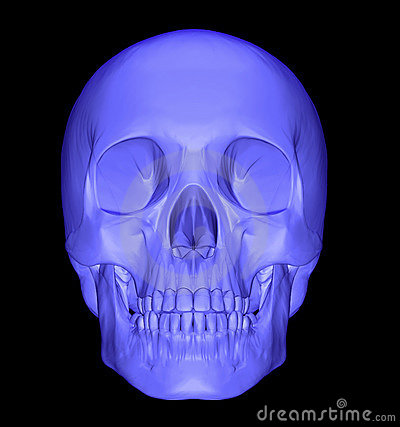 Scull 3d