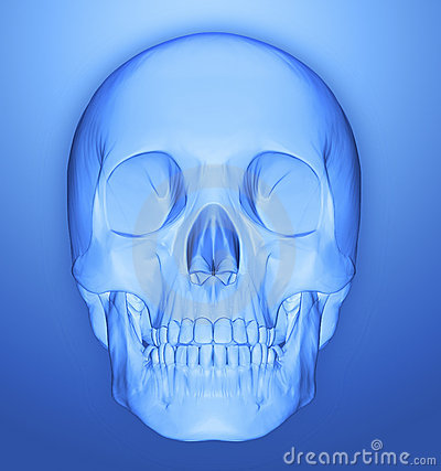 Free Scull 3d Stock Images - 9546154