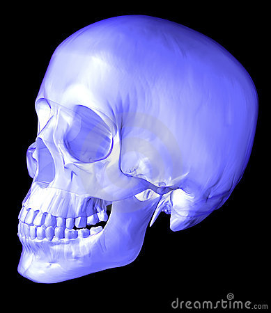 Free Scull 3d Stock Image - 9546291