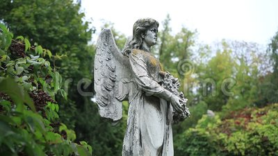 Sculpture of stone angel praying at the cemetery stock video footage