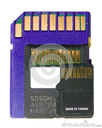 SD card, Mini SD, and Micro SD