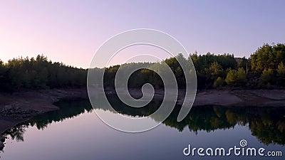 Se desliza suavemente sobre un pequeño lago natural y ecológico rodeado de pinos y reflejos almacen de video