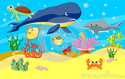 Sea animals background
