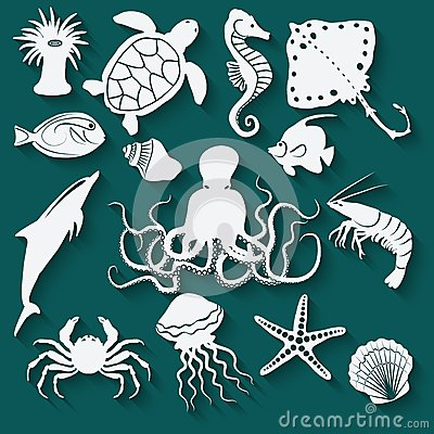 Sea animals and fish icons