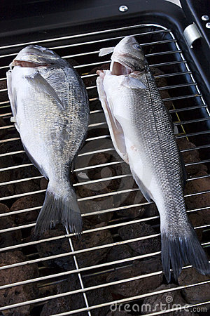 Sea bream and bass