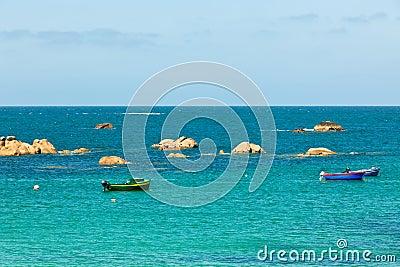 Sea and bright fisherman boats
