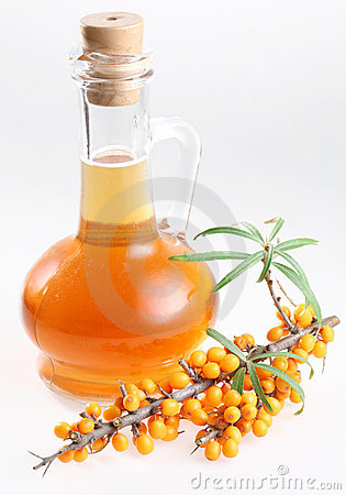 Free Sea Buckthorn Oil Stock Images - 11162514