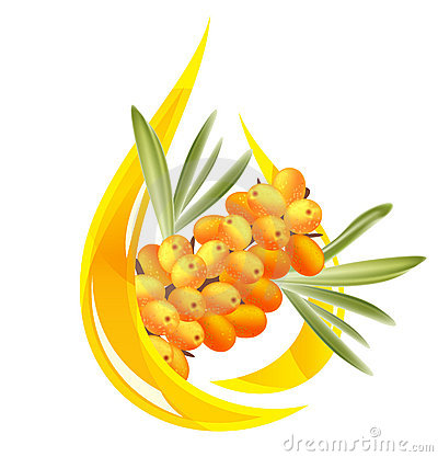 Sea buckthorn oil.