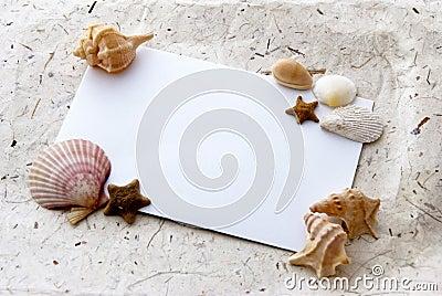 Sea card