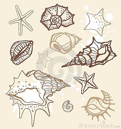 Sea collection. Hand drawn  illustration