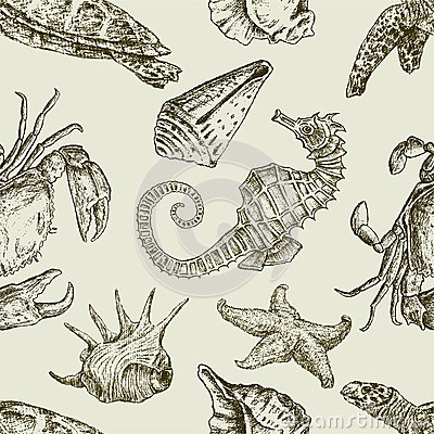 Free Sea Creatures Pattern Royalty Free Stock Photo - 27330395
