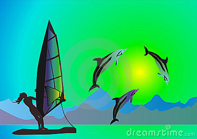Sea, dolphins and windsurfer