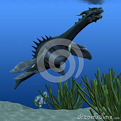 Sea Dragon 02