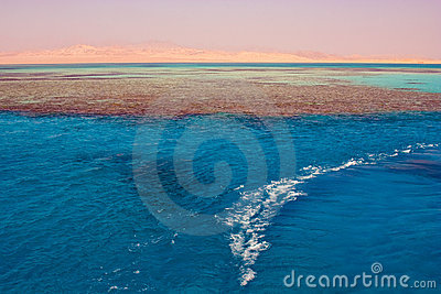 Sea in Egypt . Charm an ale the Sheikh